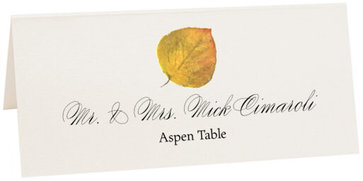 Photograph of Tented Aspen Colorful Leaf Place Cards