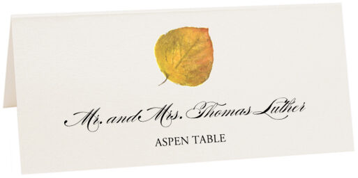 Photograph of Tented Assorted Colorful Leaves Place Cards