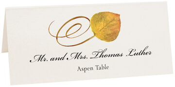 Photograph of Tented Assorted Swirly Leaves Place Cards
