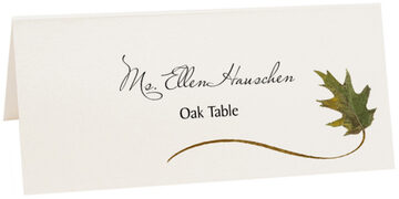 Photograph of Tented Assorted Wispy Leaves Place Cards