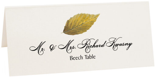 Photograph of Tented Beech Colorful Leaf Place Cards