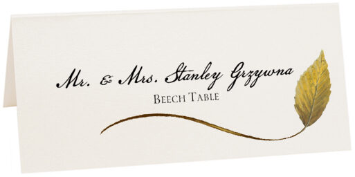 Photograph of Tented Beech Wispy Leaf Place Cards