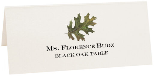 Photograph of Tented Black Oak Colorful Leaf Place Cards