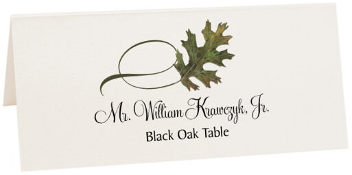 Photograph of Tented Black Oak Twisty Leaf Place Cards