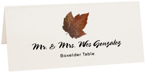 Photograph of Tented Boxelder Colorful Leaf Place Cards