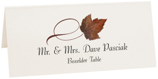 Photograph of Tented Boxelder Twisty Leaf Place Cards