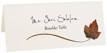 Photograph of Tented Boxelder Wispy Leaf Place Cards