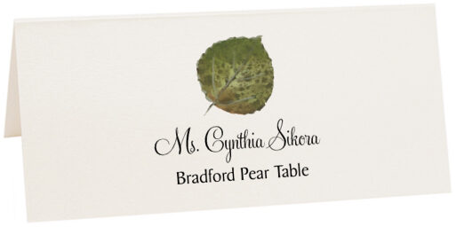 Photograph of Tented Bradford Pear Colorful Leaf Place Cards