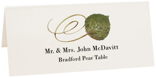 Photograph of Tented Bradford Pear Swirly Leaf Place Cards