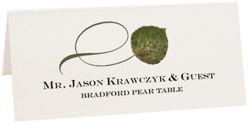 Photograph of Tented Bradford Pear Twisty Leaf Place Cards