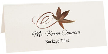 Photograph of Tented Buckeye Swirly Leaf Place Cards