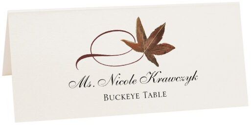 Photograph of Tented Buckeye Twisty Leaf Place Cards