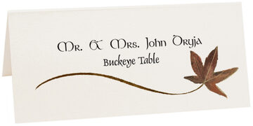 Photograph of Tented Buckeye Wispy Leaf Place Cards