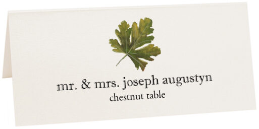 Photograph of Tented Chestnut Colorful Leaf Place Cards