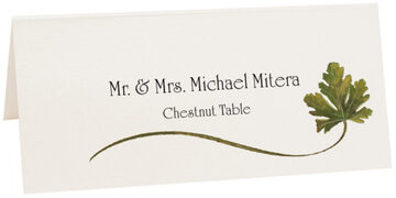 Photograph of Tented Chestnut Wispy Leaf Place Cards