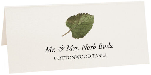 Photograph of Tented Cottonwood Colorful Leaf Place Cards