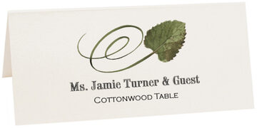 Photograph of Tented Cottonwood Swirly Leaf Place Cards