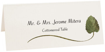 Photograph of Tented Cottonwood Wispy Leaf Place Cards