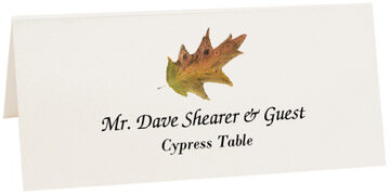 Photograph of Tented Cypress Colorful Leaf Place Cards
