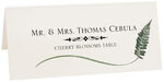 Photograph of Tented Fern Wispy Leaf Place Cards
