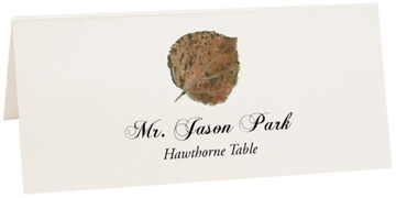 Photograph of Tented Hawthorne Colorful Leaf Place Cards