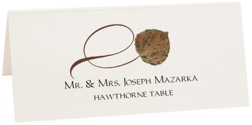 Photograph of Tented Hawthorne Twisty Leaf Place Cards