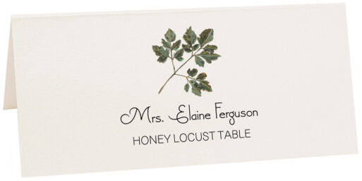 Photograph of Tented Honey Locust Colorful Leaf Place Cards