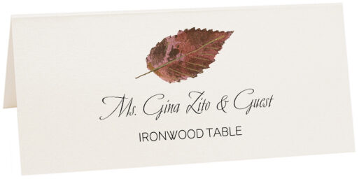 Photograph of Tented Ironwood Colorful Leaf Place Cards
