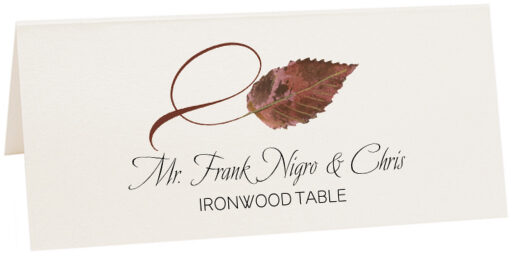 Photograph of Tented Ironwood Twisty Leaf Place Cards