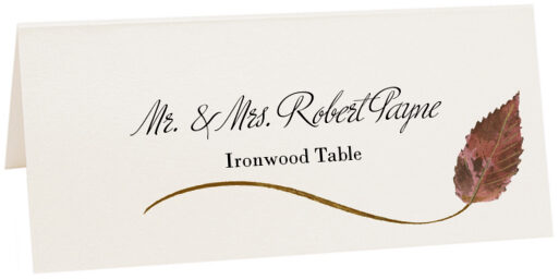Photograph of Tented Ironwood Wispy Leaf Place Cards