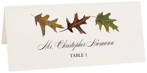 Photograph of Tented Leaf Pattern Assortment Place Cards