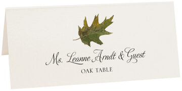 Photograph of Tented Oak Colorful Leaf Place Cards
