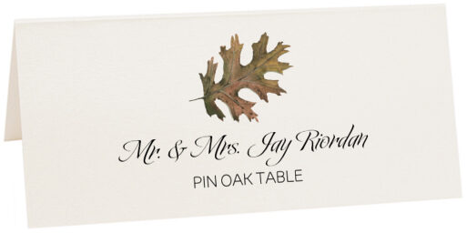 Photograph of Tented Pin Oak Colorful Leaf Place Cards