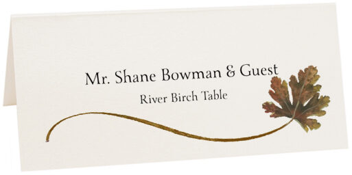 Photograph of Tented River Birch Wispy Leaf Place Cards