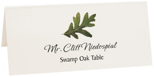 Photograph of Tented Swamp Oak Colorful Leaf Place Cards