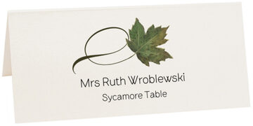 Photograph of Tented Sycamore Twisty Leaf Place Cards
