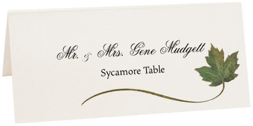 Photograph of Tented Sycamore Wispy Leaf Place Cards