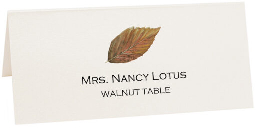 Photograph of Tented Walnut Colorful Leaf Place Cards