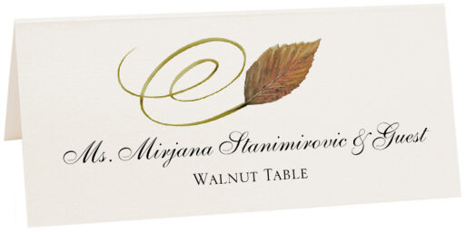 Photograph of Tented Walnut Swirly Leaf Place Cards