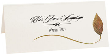 Photograph of Tented Walnut Wispy Leaf Place Cards