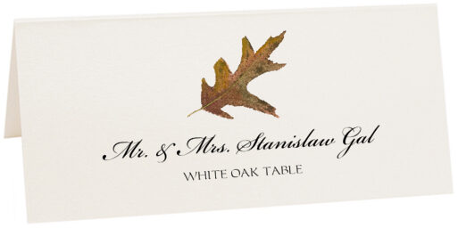 Photograph of Tented White Oak Colorful Leaf Place Cards