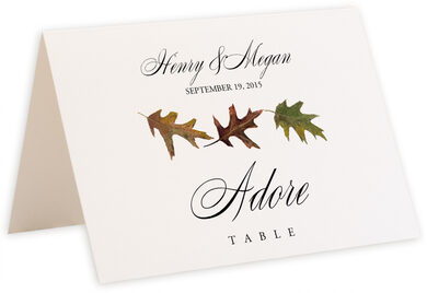 Photograph of Tented Leaf Pattern Assortment Table Names