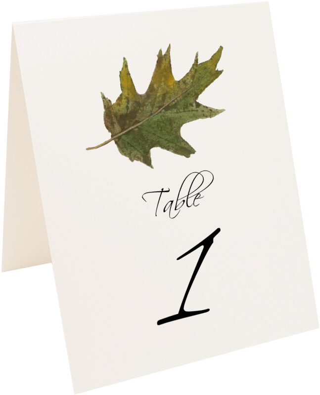 Photograph of Tented Colorful Leaves Assortment 02 Table Numbers