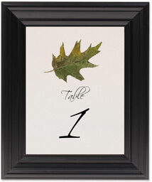 Framed Photograph of Colorful Leaves Assortment 02 Table Numbers