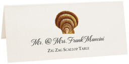 Photograph of Tented Seashell Assortment Place Cards