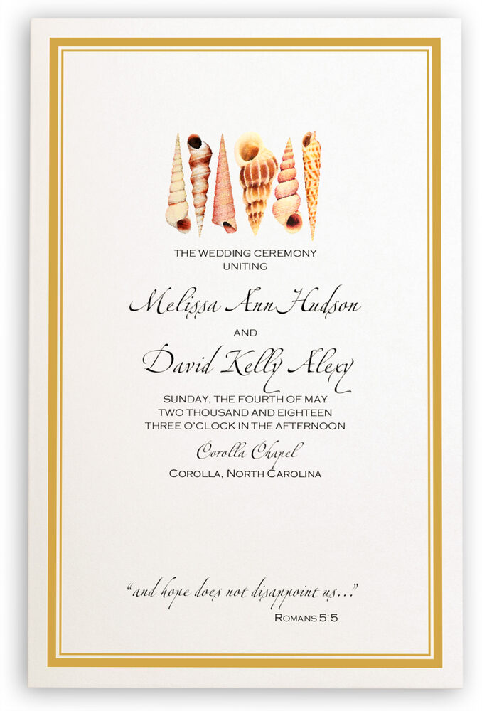 Photograph of Seashell Pattern 09 Wedding Programs