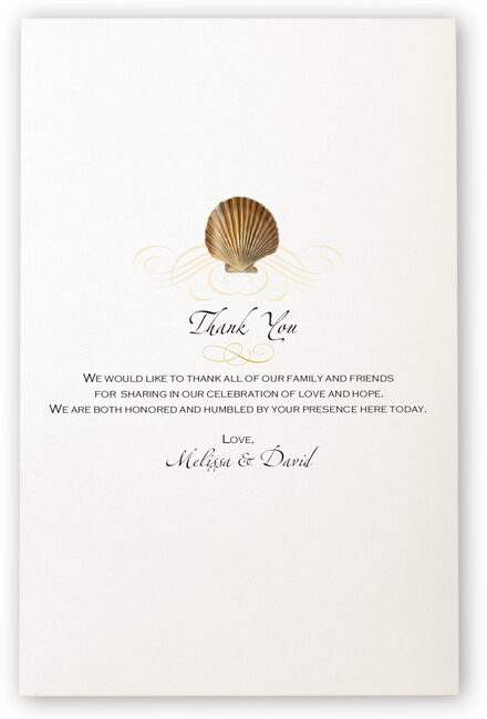 Photograph of Seashell Pattern 09 Wedding Programs