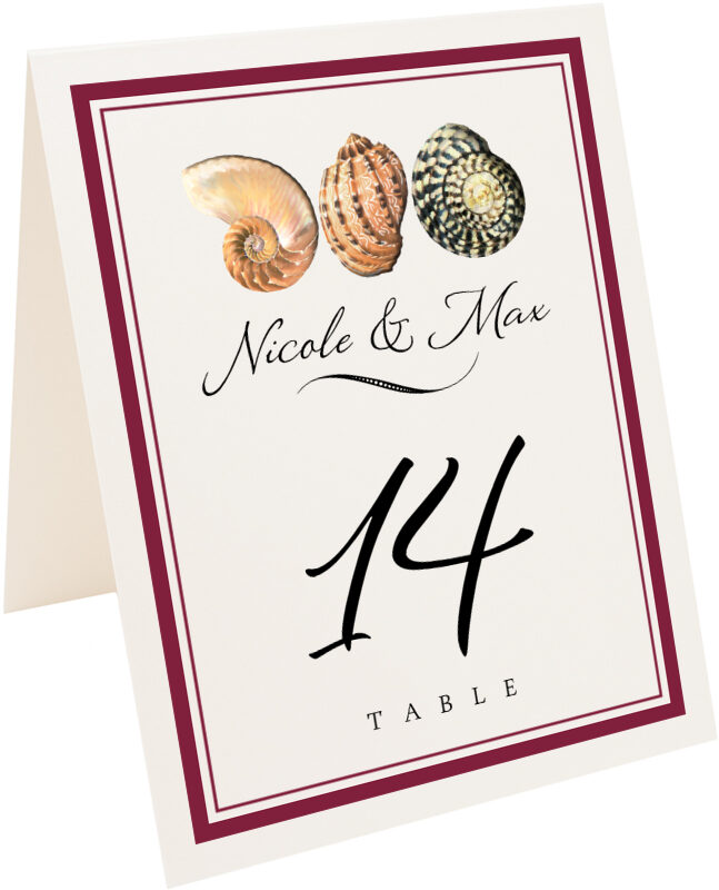 Photograph of Tented Conch Pattern Table Numbers