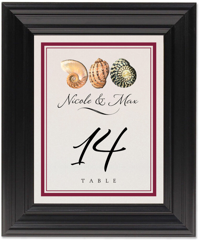 Framed Photograph of Conch Pattern Table Numbers