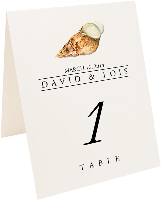 Photograph of Tented Seashell Assortment Table Numbers